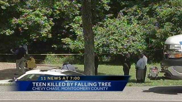 scene where teen killed in park
