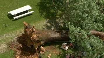 """""""It would have demolished the house. We would have been dead in the basement,"""" Sizemore told 11 News. """"I heard leaves hitting the house, and then I heard a (timber sound), and that's all the louder it got."""""""