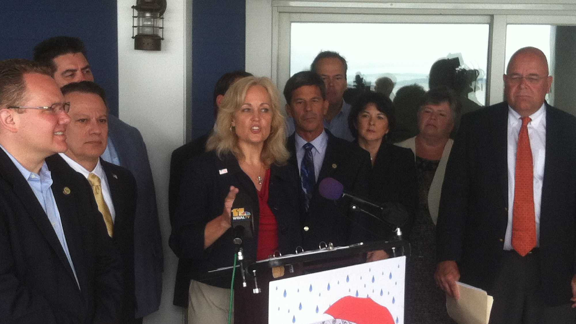 GOP protests stormwater tax