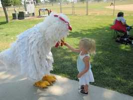 Wayne Chicken Show -- July 12 to 14, Wayne, Neb. -- Travelers are encouraged to fly the coop and make their way to this fowl-festival where they can enjoy feather-filled fun. Those looking to test their cluck can enter a range of competitions including an egg drop where contestants attempt to catch an egg without cracking it, the chicken legs competition, a hardboiled egg eating contest, and the national cluck-off in which contestants have 15 seconds to ruffle the judges' feathers with their best chicken impersonation. General admission is free of charge.