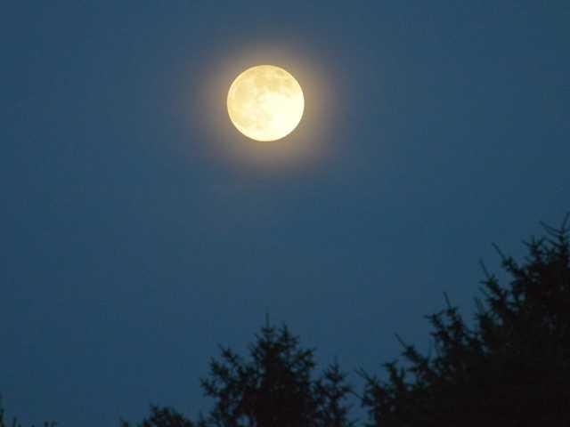 Super Moon as viewed from Dunn's Folley adjacent to Liberty Reservoir