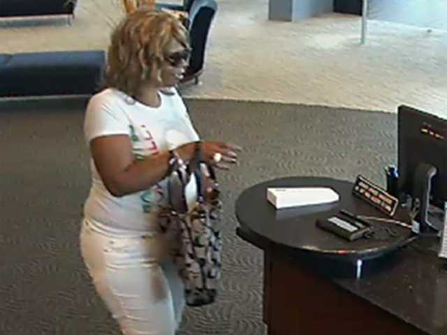 "The FBI has joined Howard County police in the search for a serial bank robber they have dubbed ""The Wigged Bandit."""