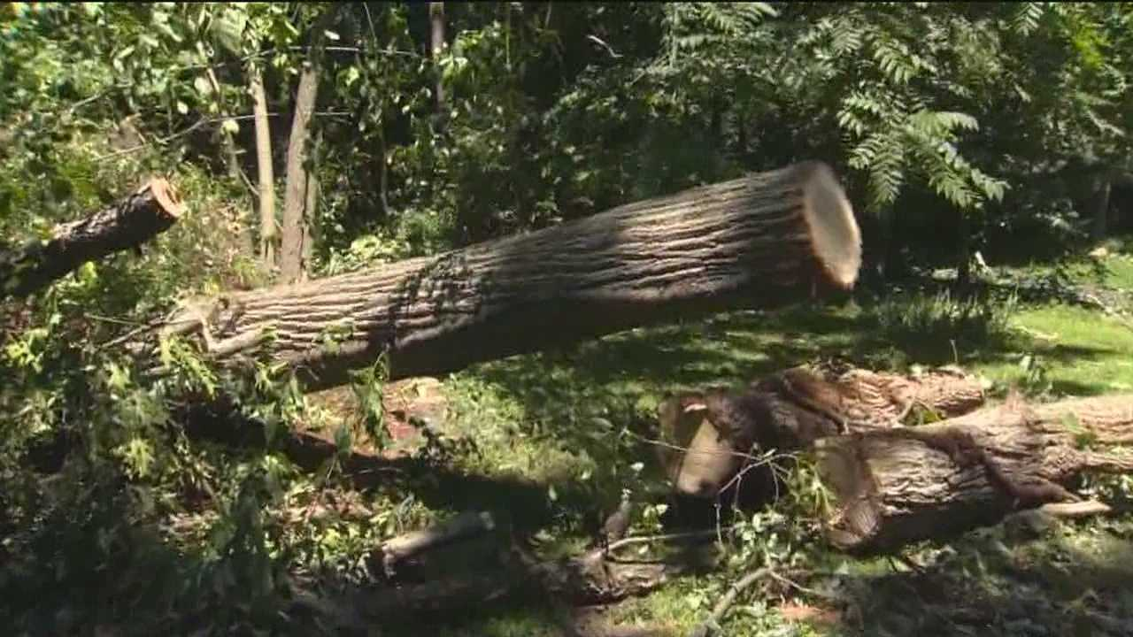 Residents are cleaning up Monday after a series of strong storms slammed parts of Carroll and Harford counties late Sunday.