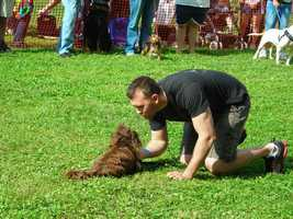 It's the sixth year for DogFest, which is a celebration for owners and their pets.  It also helps raise funds for animals in need at the no-kill shelter.