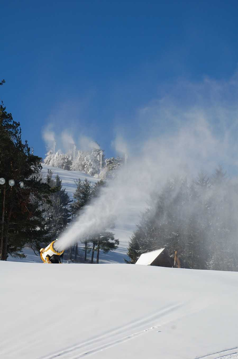 Wisp Resort announced opening day for the 2013-14 winter season is slated for Friday. Skiing, snowboarding, snow tubing, ice skating and the mountain coaster will be open Friday through Sunday, November 29 through Dec. 1 for the Thanksgiving Holiday weekend.