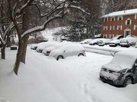 Snowfall in the Bel Air area.
