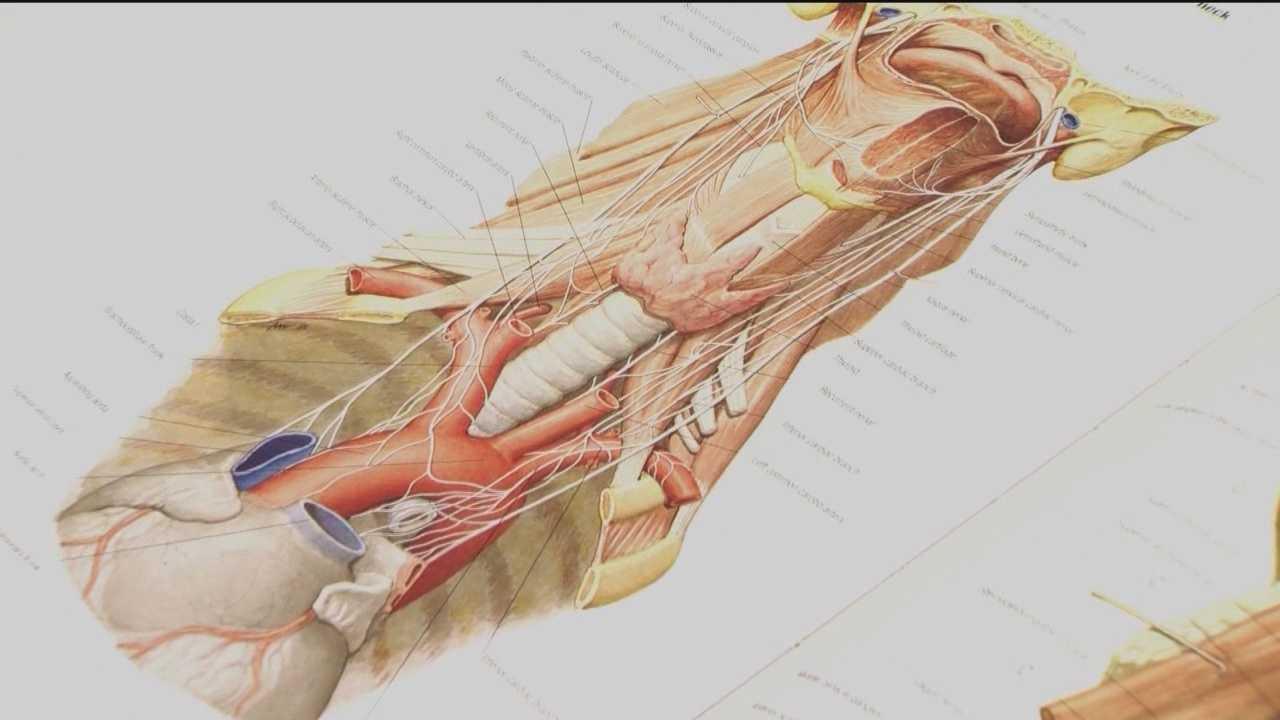 Doctor: Women should include thyroid tests in routine screenings