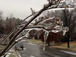 Ice also coated trees in Towson.