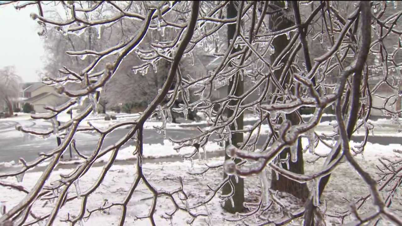As ice coated the region, many are residents experienced outages after downed trees knock out power.