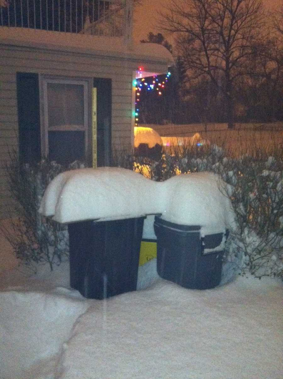In Hamilton, heavy snow breaks the lids of these trashcans, so homeowner Jeff Jones had to put plywood over them. This photo taken at 5 a.m.