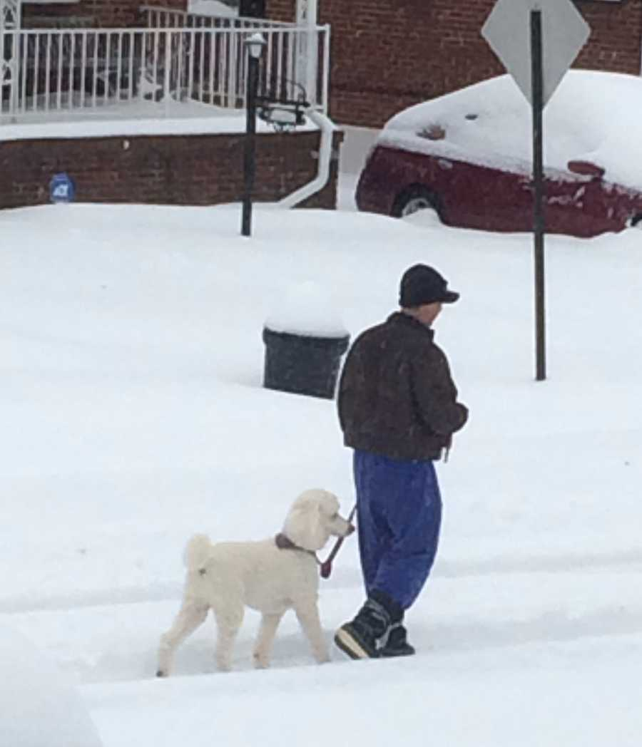 Jake Swartz and owner, Sherman, on a morning walk in northeast Baltimore.