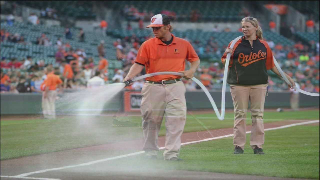 Several free seminars this year offer do-it-yourself ideas, including tips for keeping lawns looking as good as the field at Oriole Park at Camden Yards.