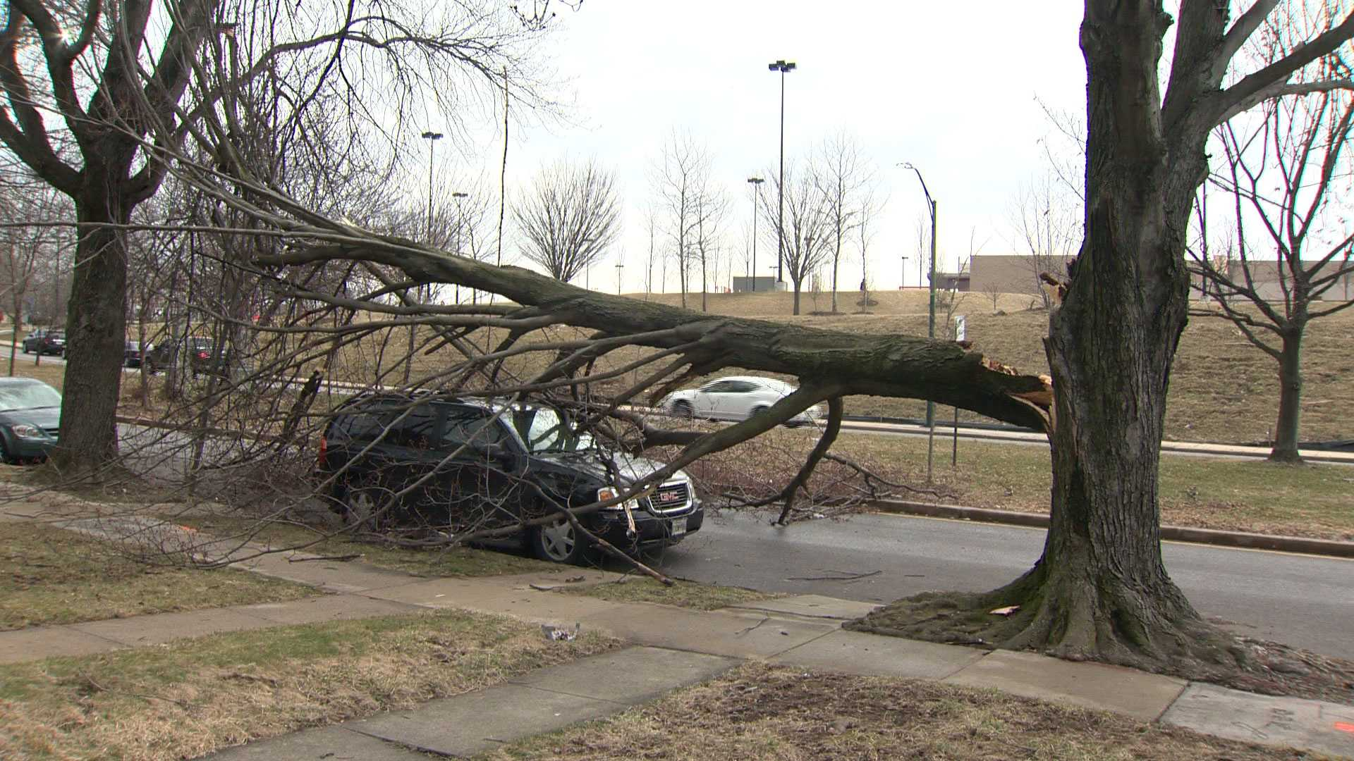 A huge tree breaks and falls onto an SUV on Tioga Parkway in northwest Baltimore.