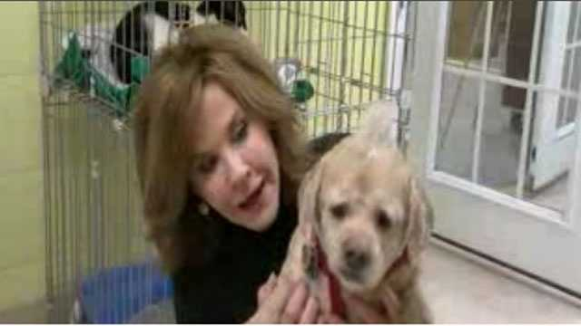 Linda Blair with rescued shelter dog Barney