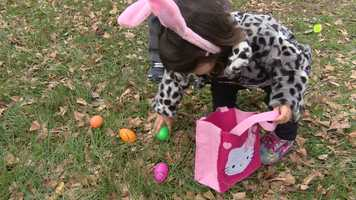 The annual family tradition features games, crafts, live entertainment and nonstop egg hunts.
