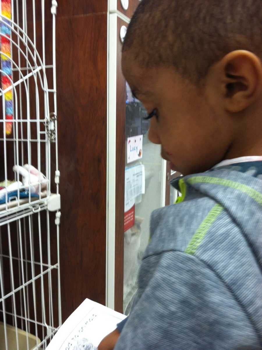 Experts said the judgment-free attitudes of the listeners -- the pets -- help motivate the kids to want to practice reading, give them more confidence and, in turn, make them become more competent readers.