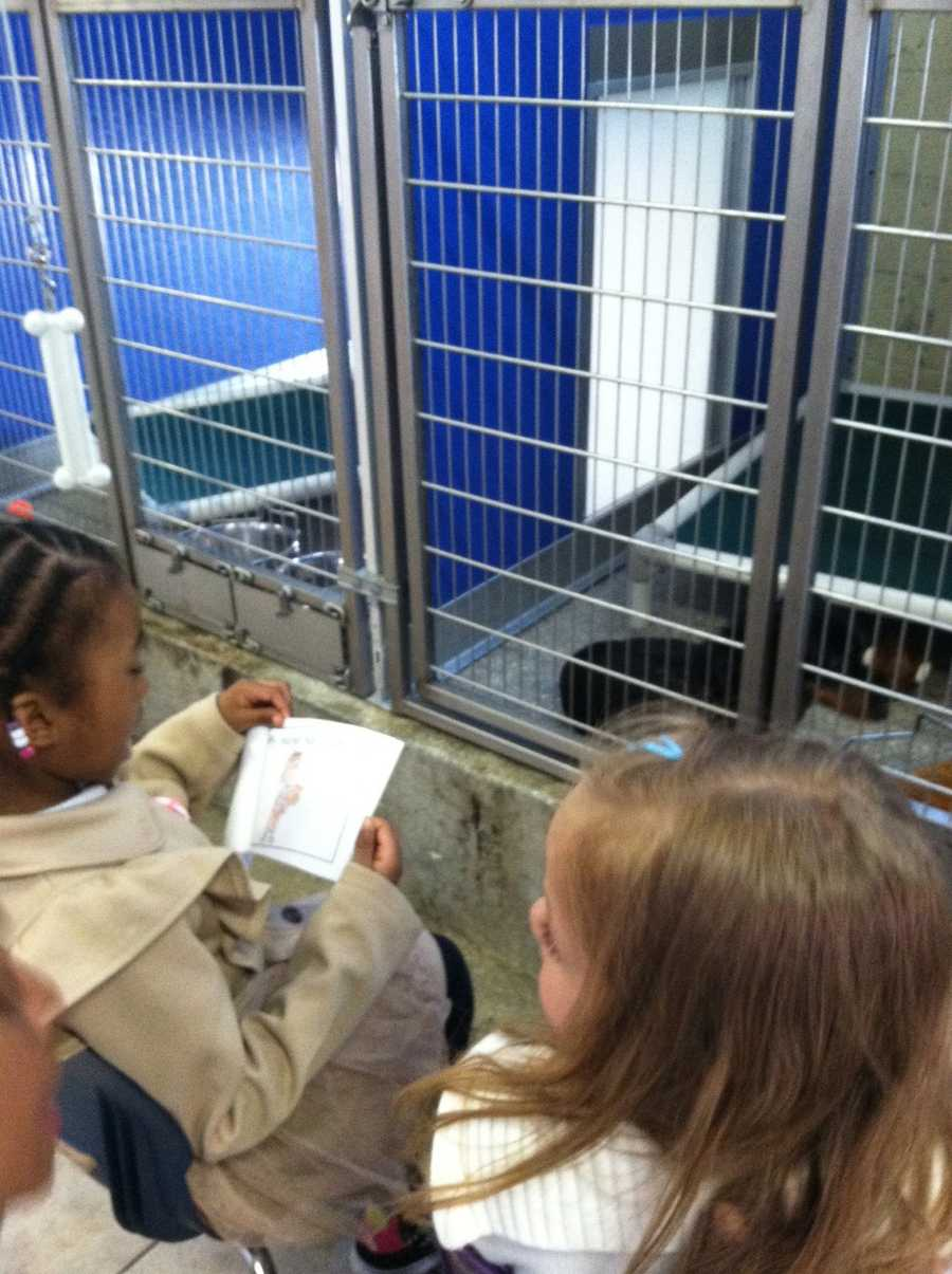 """""""This is a wonderful opportunity for our children to improve their reading skills in a fun way and learn to be kind to animals,"""" said Sweet Potato Kids founder Michelle Hall-Davis."""