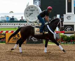 May 13: Ride On Curlin