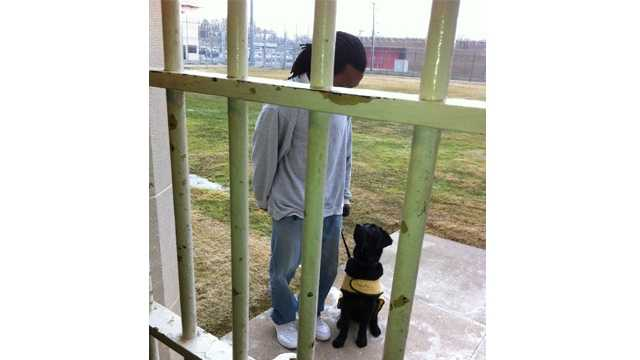 An inmate at the Eastern Correctional Institution helps train a puppy that will become a service dog for disabled military veterans.