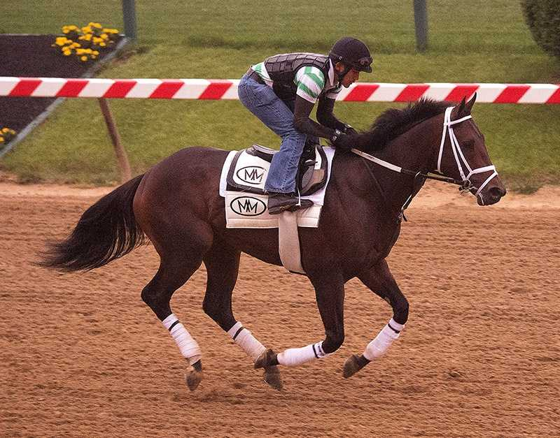 May 13: Skychai Racing and Starlight Racing's General a Rod galloped 1 1/2 miles under exercise rider Joel Barrientos. Trainer Mike Maker said he will school in the gate Thursday following his morning gallop.