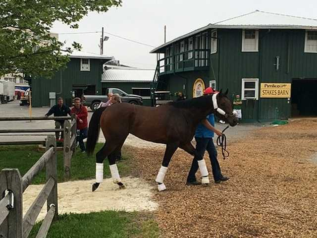 "POST 5: Bayern (Odds 10-1)Owner - Kaleem Shah Inc.Trainer - Bob BaffertJockey - Rosie NapravnikBreeder - Helen Alexander""The post position is fine. He just has to run his race. We know that California Chrome is the horse to beat. We'll see what happens,"" Shah said."