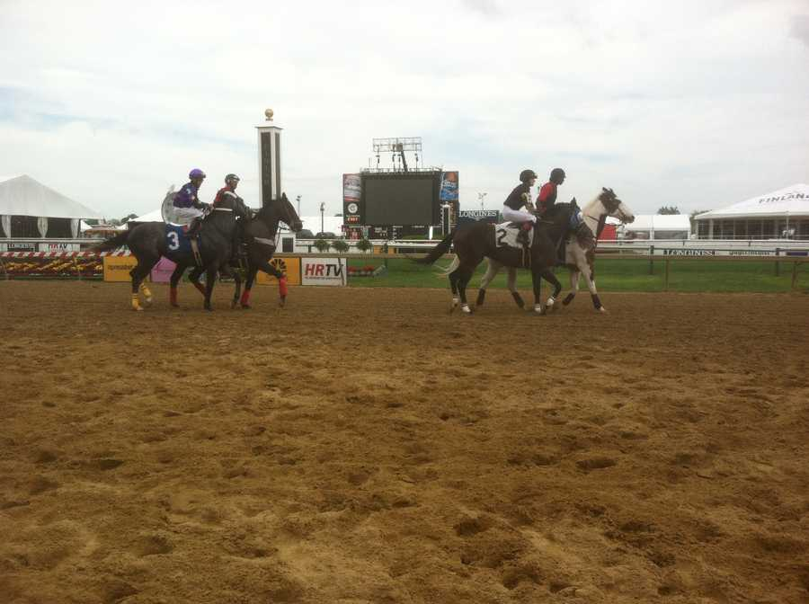 May 16: The track on Black-Eyed Susan Day