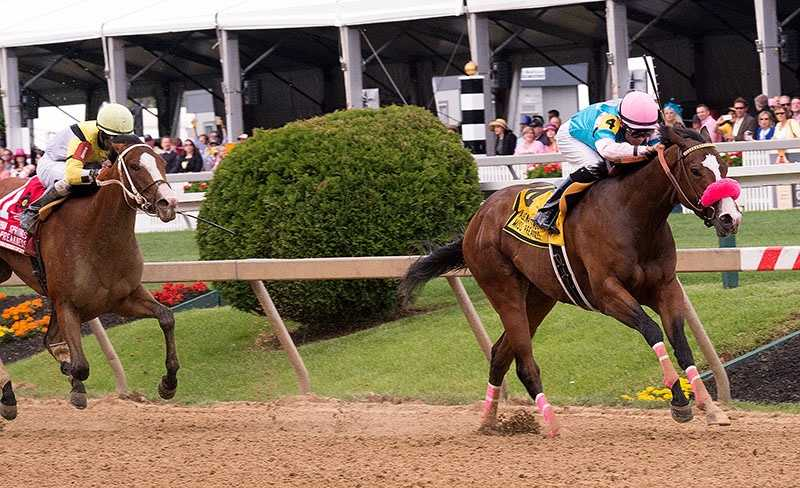 May 16: Cal MacWilliam and Neil Teitelbaum's Miss Behaviour was quickest down the backstretch, around the turn and through the lane to capture the $100,000 Adena Springs Miss Preakness Stakes for 3-year-old fillies Friday at Pimlico Race Course.