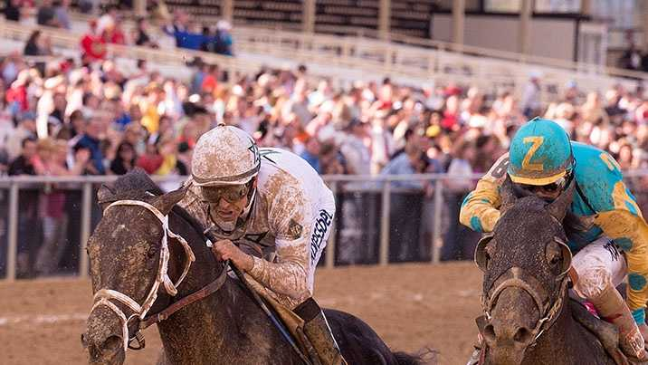 May 16: WinStar Farm's Revolutionary launches an extended and thrilling rally to register a narrow victory in Friday's $300,000 Pimlico Special (G3).