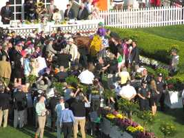 Follow a day at the Preakness from start to finish, including beautiful horses, flowers, celebrities and lots of racing fun!