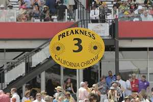 See photos from the finish line at the 139th Preakness Stakes. Photos by Christine George.