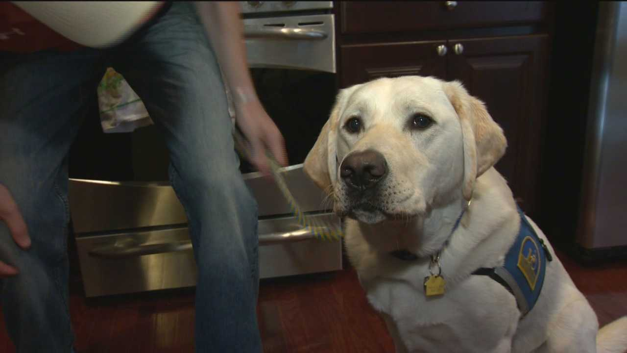 A Howard County veteran wounded in Afghanistan is regaining his independence with the help of a dog.