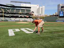 The grass has grown since the ALDS, so the Orioles grounds crew is repainting the Postseason logos on the field at Camden Yards. (See photos from the American League Division Series here)