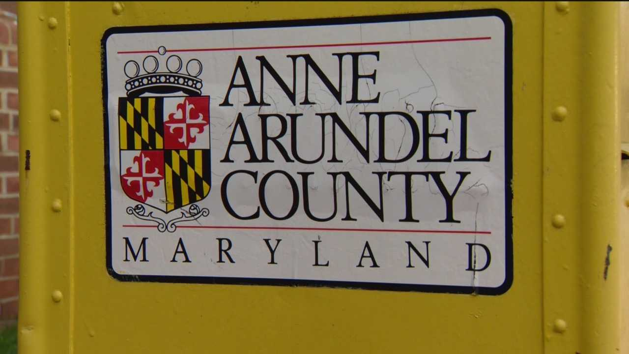 Three Anne Arundel County government employees were disciplined for displaying a noose and exchanging inappropriate jokes.