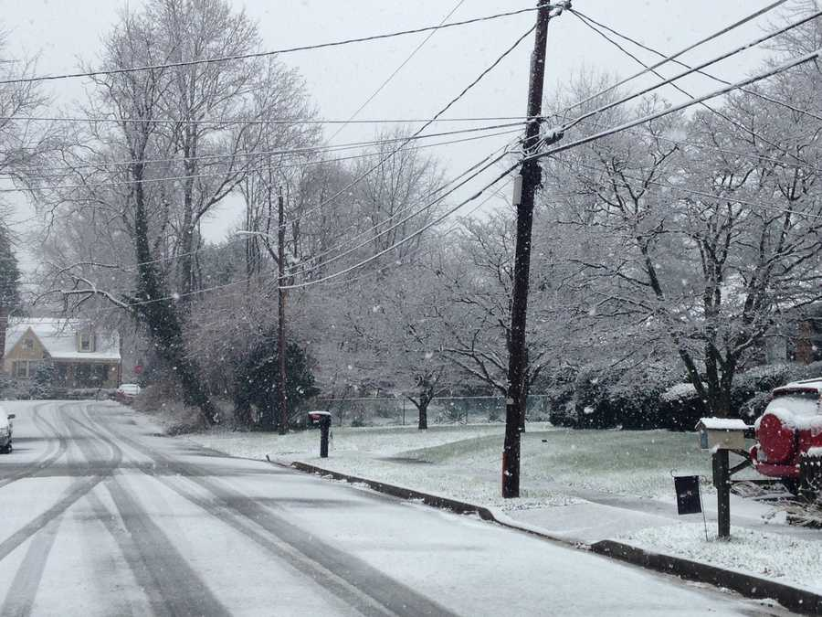 In many towns, such as Catonsville (pictured here), the snow wasn't expected to stick to the ground due to surface temperatures that were above freezing.