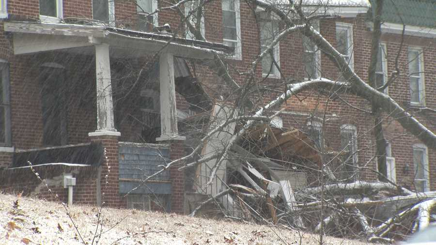 A tree fell onto some homes in Northwest Baltimore on Monday morning, causing a lot of damage for the homeowners.