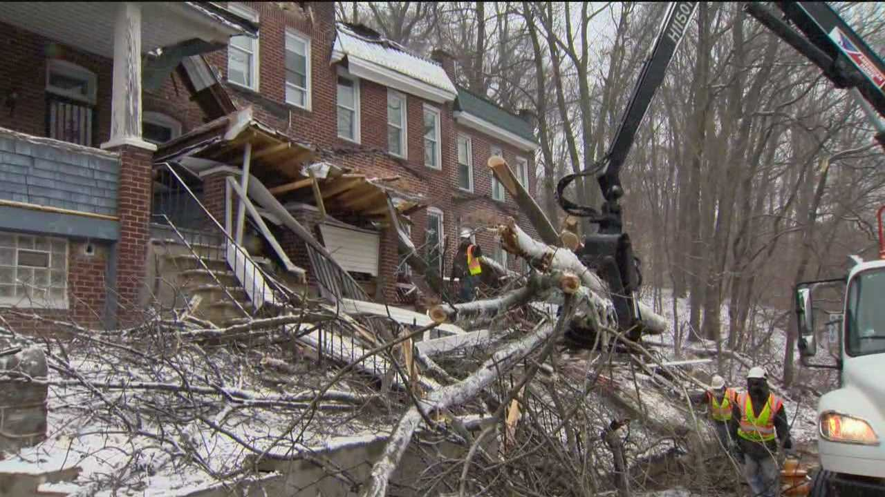 Several houses were damaged when a tree fell in northwest Baltimore Monday morning.