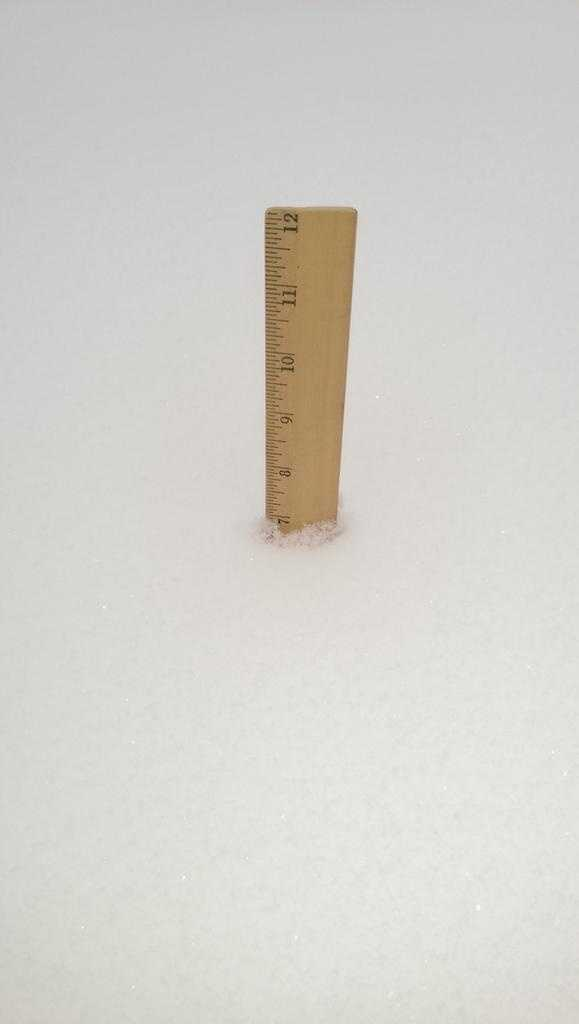 More than 7 inches of snow in Edgewood