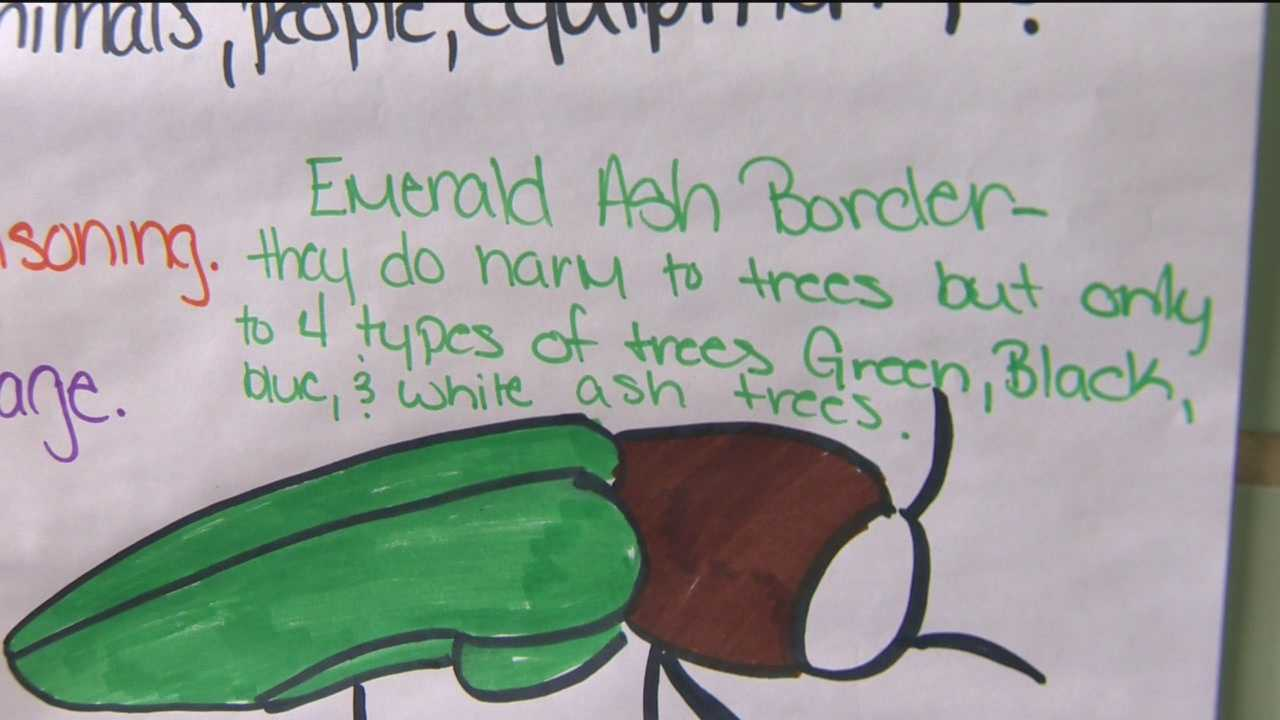 On Earth Day, students at one local middle school are learning about how they can help the environment by getting rid of invasive species.
