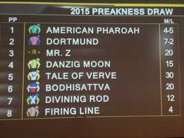 Preakness post positions