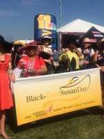 Black Eyed Susan Day
