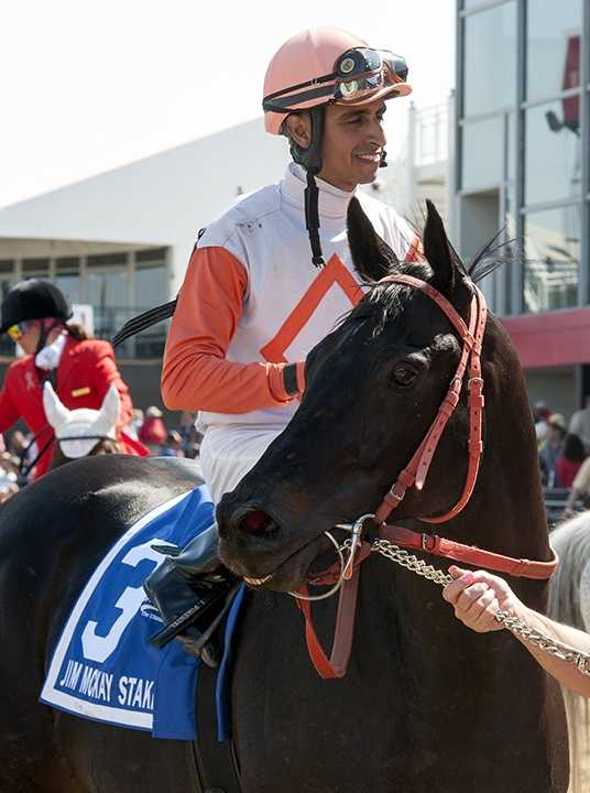 Showing no signs of slowing down at the age of 9, Ben's Cat reeled in Bold Thunder in deep stretch and stuck a neck out at the wire for his third consecutive victory in the $100,000 Jim McKay Turf Sprint Friday at Pimlico Race Course.