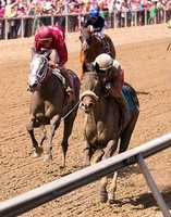 Under a patient ride by Kendrick Carmouche, Irish Jasper surged through an opening along the inside in mid-stretch and sprinted clear to a 1 1/4-length victory Friday in the 30th running of the $150,000 Adena Springs Miss Preakness (G3).