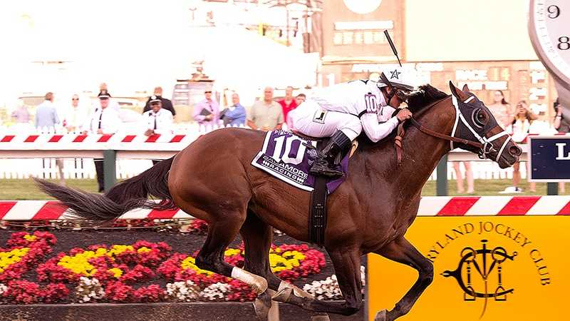 For much of his career, WinStar Farm homebred Commissioner has shown a flair for the dramatic. Five of his first 11 starts were decided by less than a length, including each of his three wins, none of which came by more than a neck.