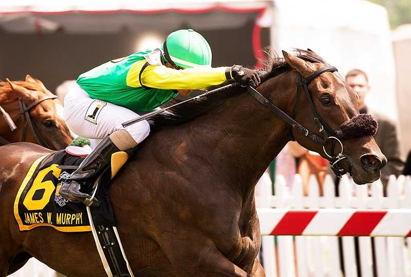 Woody Weekes' Woodwin W swept past pacesetter Bluegrass Singer at the top of the stretch and sprinted clear to keep his perfect record intact with a three-quarter length victory in Saturday's $100,000 James W. Murphy Stakes.