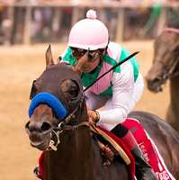 Juddmonte Farms' Fame and Power led every step of the way for a front-running three-length victory in Saturday's 18th running of the $100,000 Sir Barton for 3-year-olds at Pimlico Race Course.