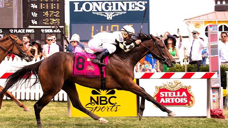 Given a calculated ride by jockey Javier Castellano, Watsdachances collared Emotional Kitten in the final sixteenth of a mile and pulled away to win the 64th running of the $150,000 Stella Artois Gallorette Handicap (G3) by one length Saturday at Pimlico Race Course.