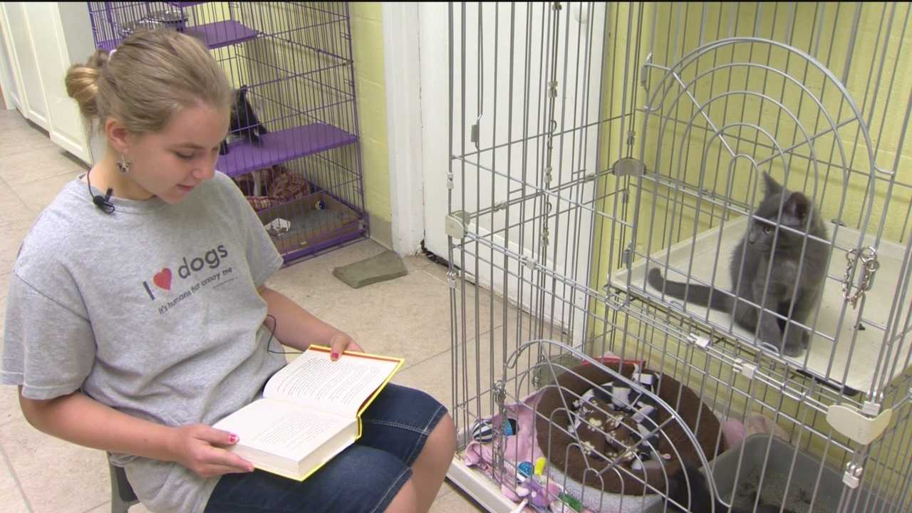 The pets at the Baltimore Humane Society are all looking for good homes. But in the meantime, they're getting companionship from some kids.
