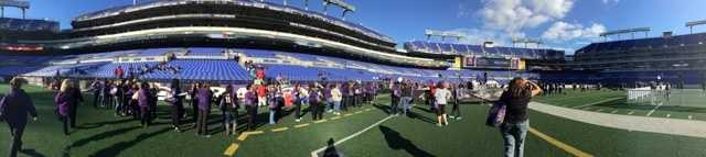 Ravens' female fans gathered at M&T Bank Stadium Monday evening for A Purple Evening.