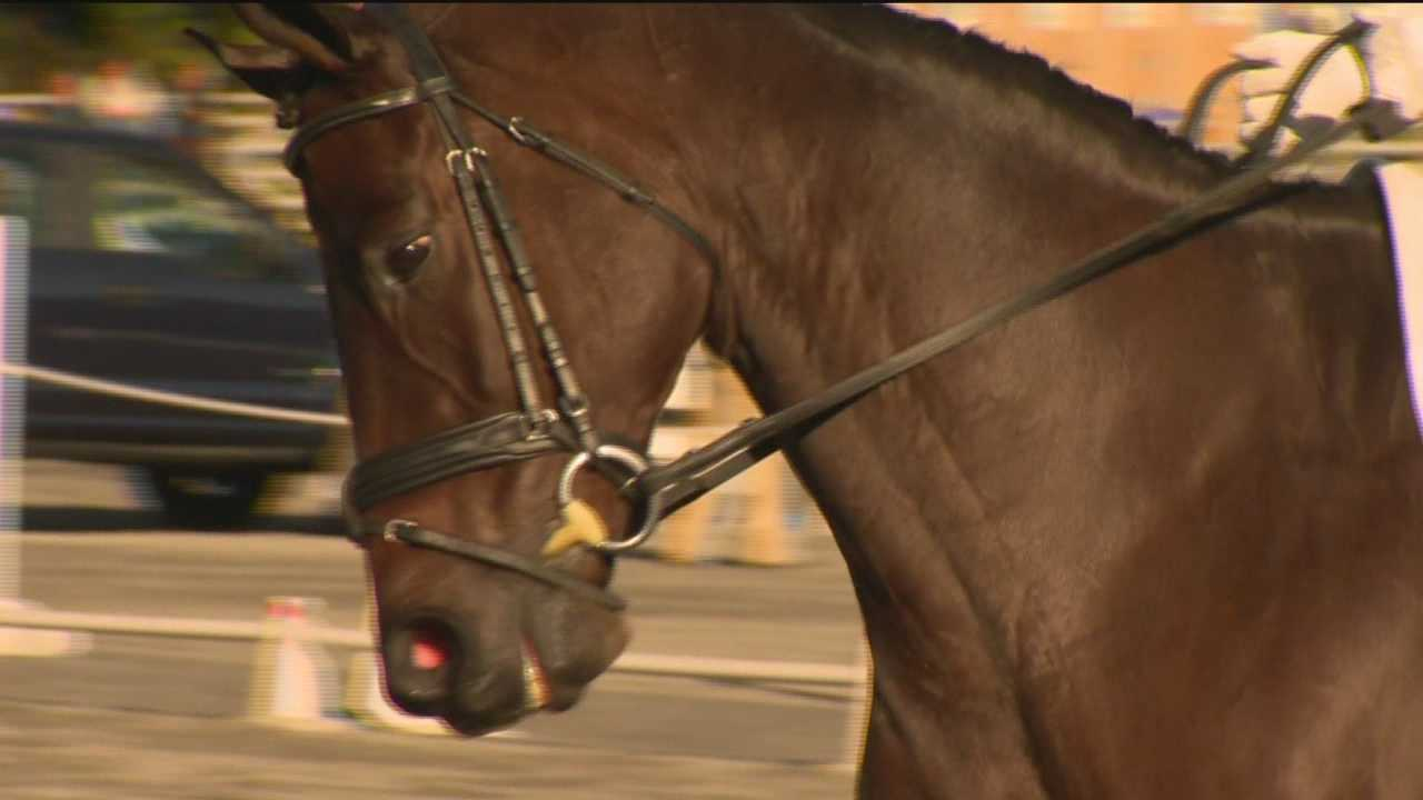 Cecil County is the backdrop for national and international riders who are now under the Olympic eye. Hopefuls are contending for a spot on the U.S. equestrian team.