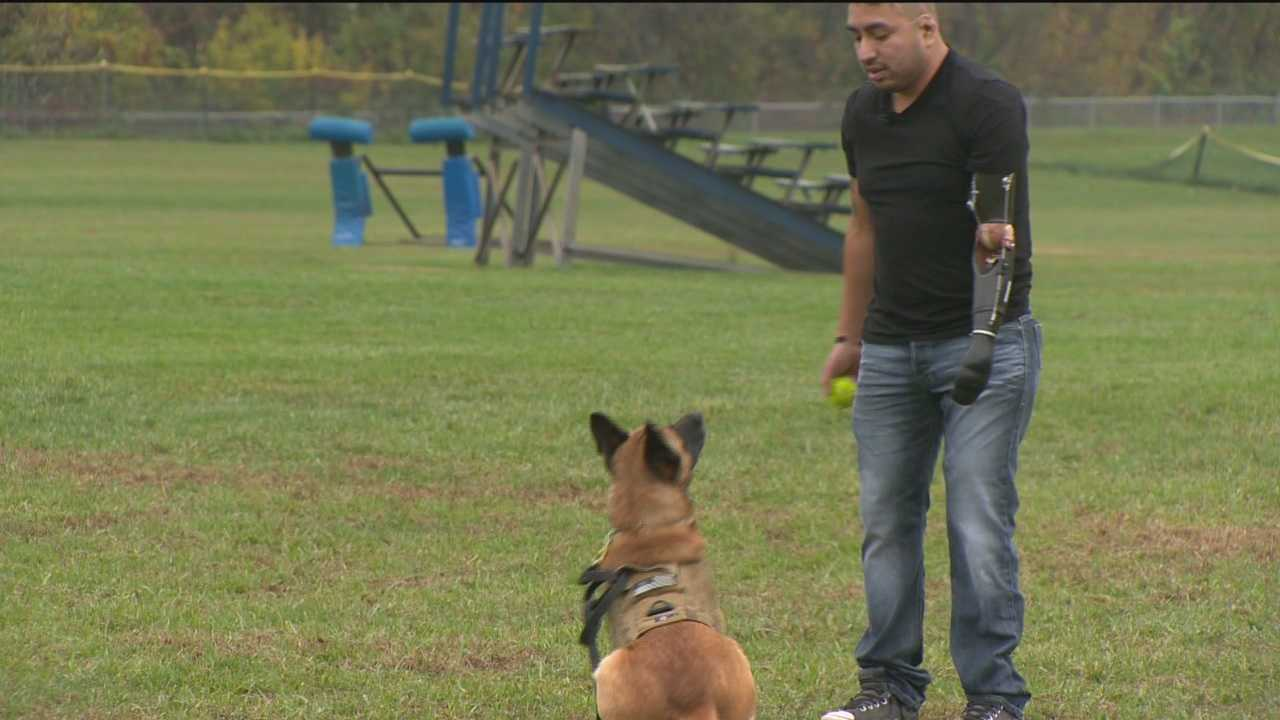 A Howard County-based organization is helping military veterans through a variety of programs including one that pairs them with a canine companion.